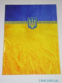 Папка на подпись полноцветная, желто-голубая